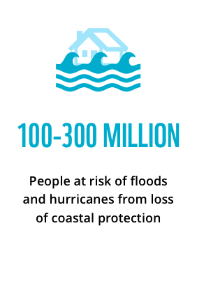 100-300 million people at risk of floods and hurricanes from loss of coastal protection