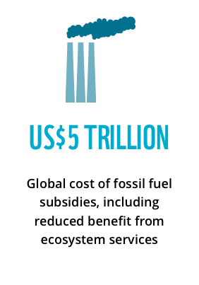 US$5 trillion: global cost of fossil fuel subsidies, including reduced benefit from ecosystem services