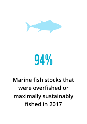 94%: marine fish stocks that were overfished or maximally sustainably fished in 2017