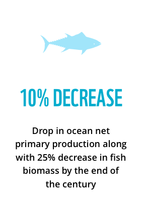 10 decrease in ocean net primary production along with 25% decrease in fish biomass by the end of the century