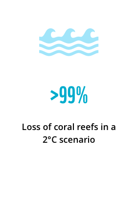 >99% loss of coral reefs in a 2°C scenario, with losses of up to US$5.3 billion per year by 2030