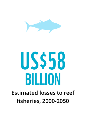 US $58 billion estimated losses to reef fisheries 2000-2050