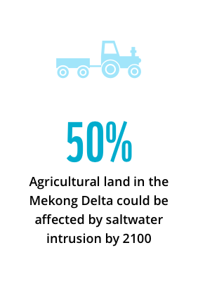 50% agricultural land in the Mekong Delta could be affected by saltwater intrusion by 2100